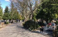 Niewielki ruch na cmentarzu ...