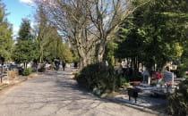 Niewielki ruch na cmentarzu Łostowickim...