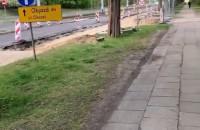 Dusan Kuciak spacer z treningu