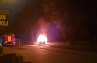 Pożar auta przy wejściu do parku przy ul. Zwierzynieckiej