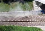Porządki przy Mostku Weisera (Strzyża)