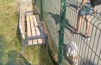 Postawili płot i zagrodzili nim ławkę na placu zabaw