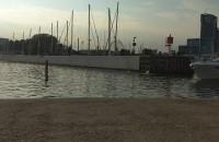 Turyści wskakują do wody przy Marinie w Gdyni