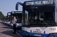Nowe midibusy w Gdyni