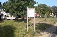 Sprzątają zaśmiecony skwer na Styp-Rekowskiego