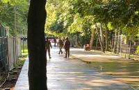 Znaleźli niewybuchy na terenie Westerplatte