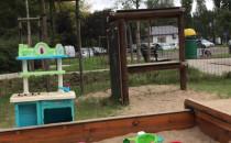 Dziki blisko placu zabaw