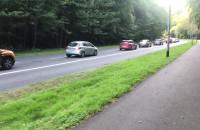 Tak gdyńscy kierowcy świętują Dzień bez samochodu