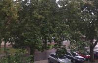 Jesienna wichura i deszcz w Gdańsku
