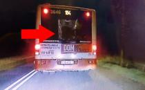 Bójka podczas wysiadania z autobusu 154