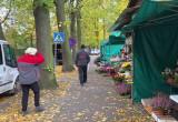 Sprzedawcy pod cmentarzem w Oliwie pakują się