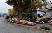 Kwiaty pod cmentarzem Srebrzysko