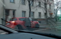 Drzewo spadło na maskę auta