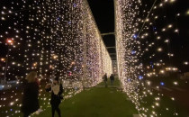 Iluminacje świąteczne rozświetliły Park...