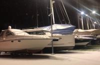 Śnieżny wieczór w marinie w Gdyni. I są ptaszki!