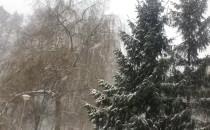 Śnieg solidnie pada