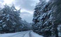 Zimowy las na Kaszubach