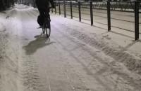Na sankach za rowerem