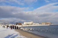 Zimowi spacerowicze na gdyńskiej plaży