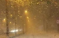 Zamieć śnieżna w Gdyni!