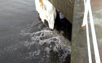 Co to za brudy wypływają z mola w Brzeźnie...