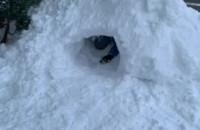 Podwórkowe zabawy w śniegu