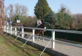 Przejażdżka konna po mieście