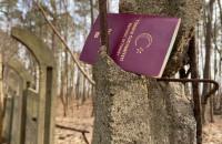 Zgubiony turecki paszport w lesie koło plaży