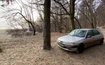 Auto zaparkowane w lesie tuż przy plaży