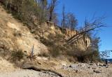 Klif w Orłowie. Nowe osuwiska po zimie