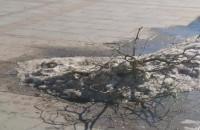 Reprezentacyjny skwer Sopotu pełen piachu i starego śniegu