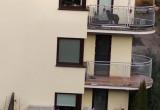 Pies zamknięty na balkonie