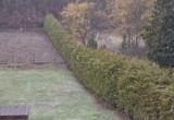 Śnieżyca w Chyloni