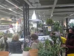 Tłumy i brak odstępów w Ikei