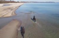 Gdańsk, plaża Jelitkowo jak Miami Beach