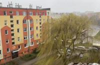 Śnieg z deszczem na Wielkanoc w Gdyni