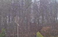 Śnieżyca na Chyloni. W kwietniu?!