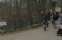 Dużo ludzi w gdańskim zoo