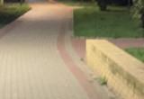 Nocny gość na Żabiance