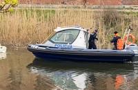 Policja próbuje złapać rannego łabędzia