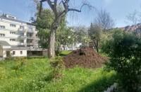 Cuchnąca ziemia pod blokami