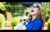 Zaćmienie Słońca LIVE z Hevelianum