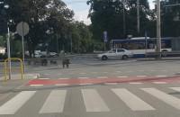 Dziki na Grabówku