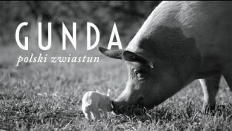 Gunda - zwiastun