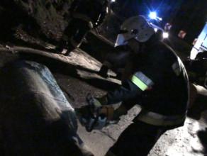 Wichura przewróciła drzewo na ul. Sopockiej w Gdyni
