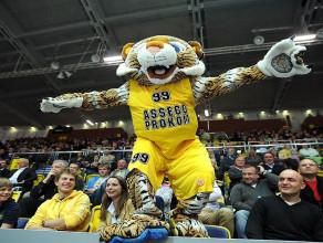 Tygrys Asseco Prokom Gdynia