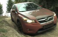 Subaru xv. Subaru do lasu i do baru