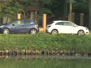 Peugeot czy seat? Fiesta czy butik?