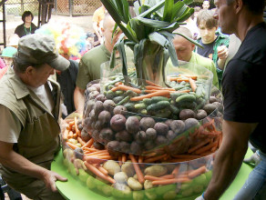 ZOO: Wielki tort warzywny zjedzony