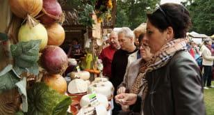 """Zdrowe, lokalne jedzenie na """"Darach Ziemi"""""""